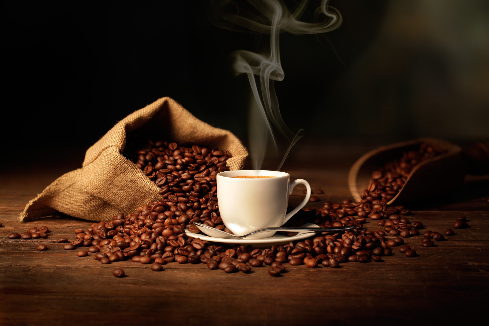 Top 10 Online Stores to Buy Coffee Beans in India