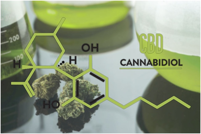 The advantages of CBD in your life.