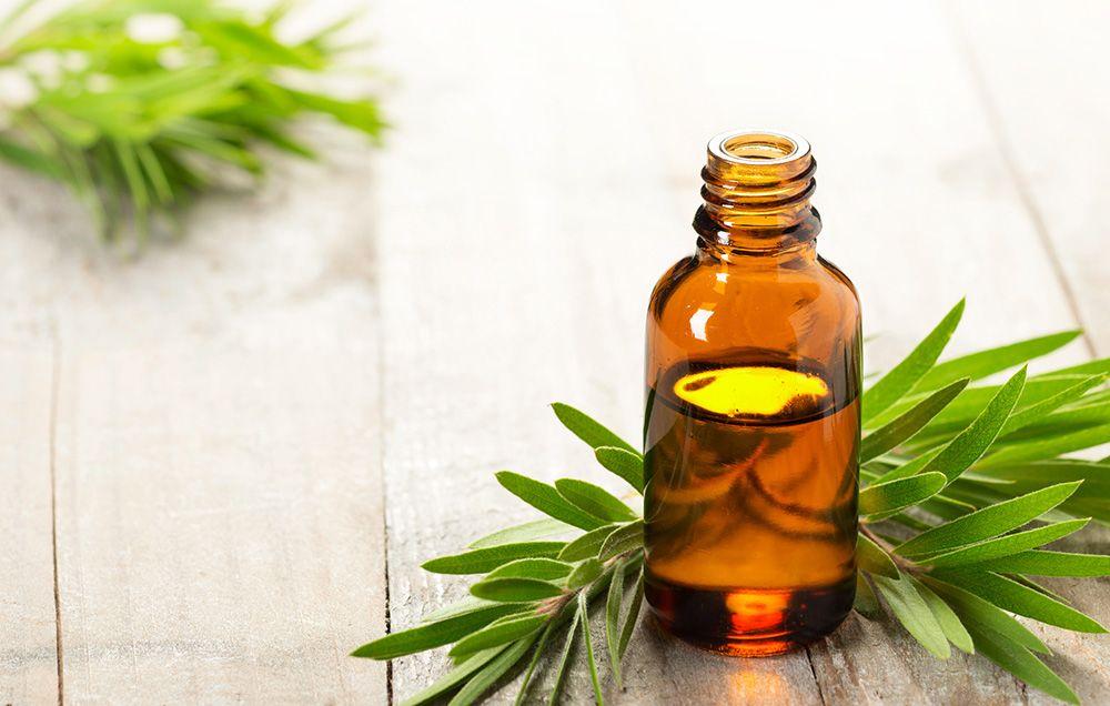 Tea Tree Oil Uses