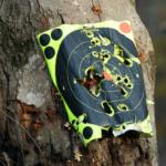 target practice shooting